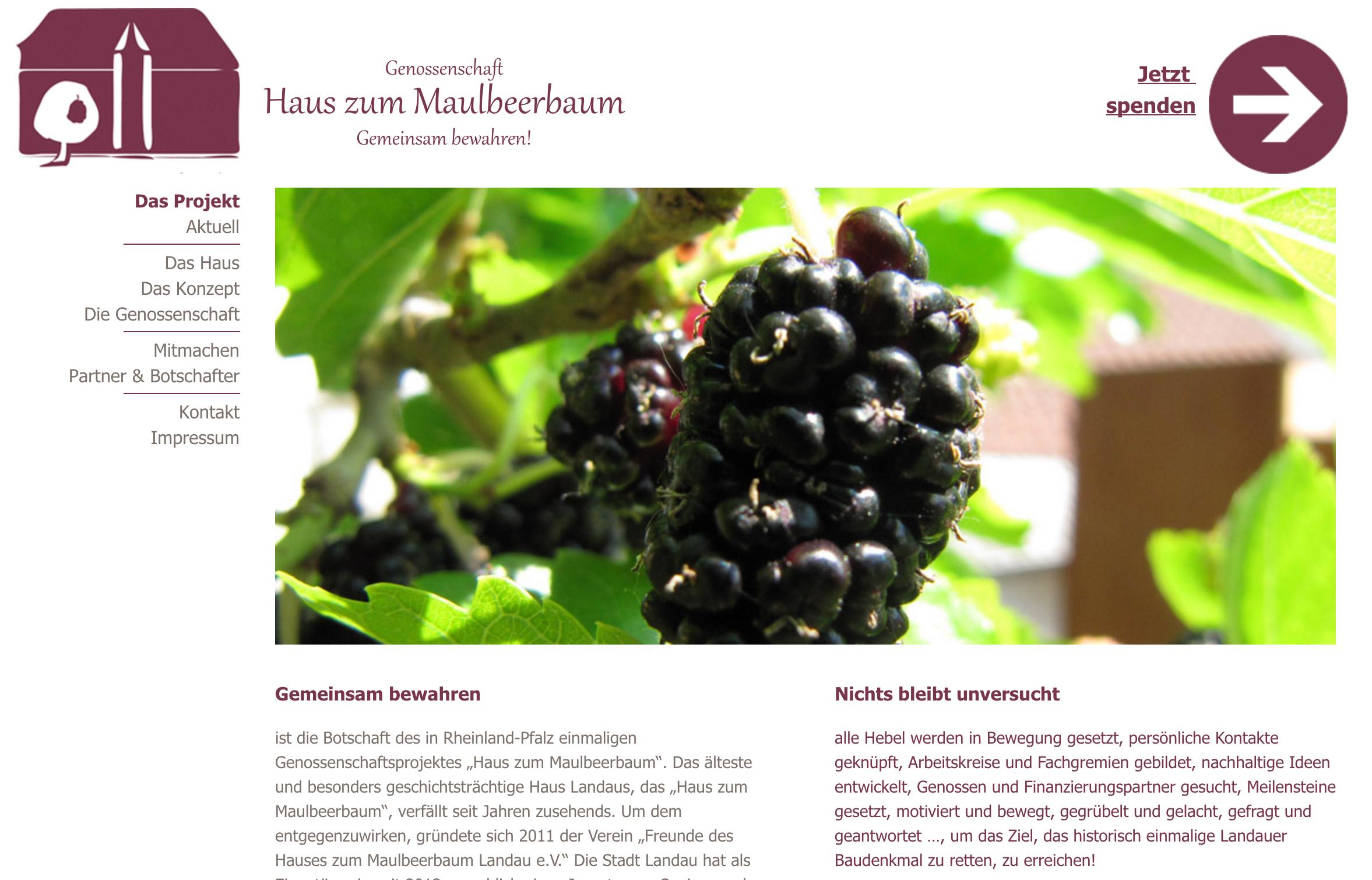 Haus zum Maulbeerbaum